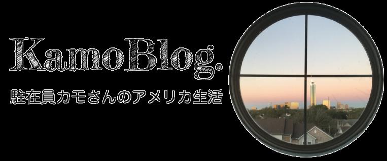 カモブログ